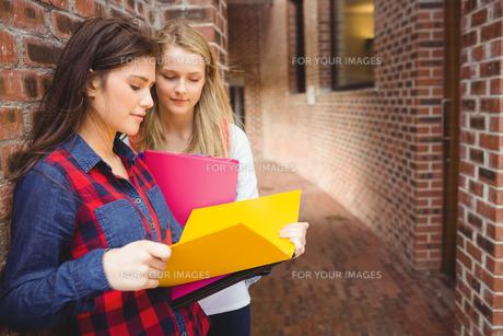 Smiling students reading bookの素材 [FYI00010345]