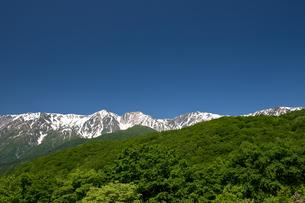 紺碧の空と白馬連峰の写真素材 [FYI00023560]