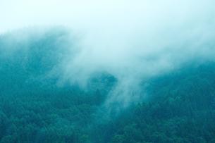 白馬東山を上る雨霧の写真素材 [FYI00023562]