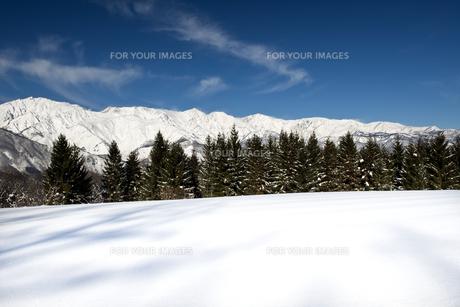 白馬みねかたスキー場より望む北アルプスの写真素材 [FYI00023587]