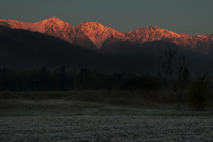 初霜と白馬三山の素材 [FYI00023621]