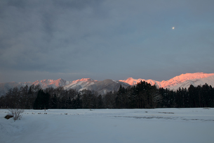 夜明けの月 -白馬深空地区にて-の写真素材 [FYI00023706]