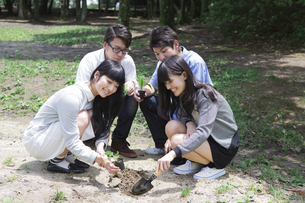 植樹をする学生たちの素材 [FYI00023723]