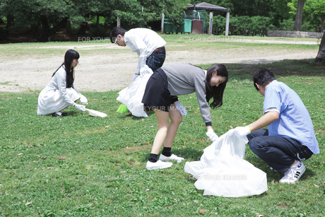 清掃活動をする学生たちの写真素材 [FYI00023726]
