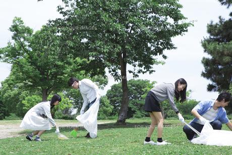 清掃活動をする学生たちの写真素材 [FYI00023733]