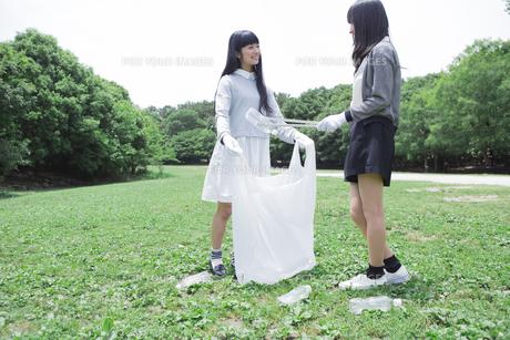 清掃活動をする学生たちの写真素材 [FYI00023739]