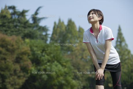 ストレッチをする女性の写真素材 [FYI00023866]