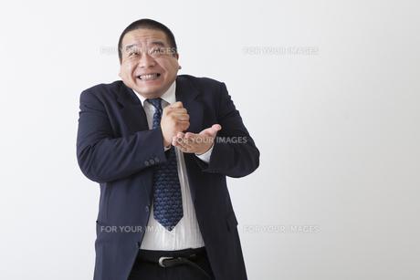 スーツを着た中年男性の写真素材 [FYI00023982]