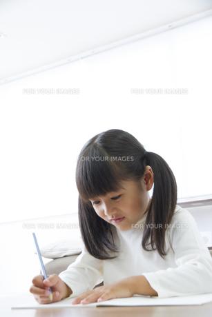 勉強をする女の子の素材 [FYI00024087]