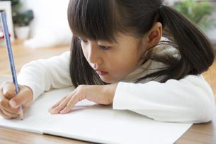 勉強をする女の子の写真素材 [FYI00024112]