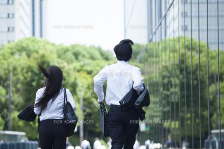 若い会社員の男女の素材 [FYI00024342]