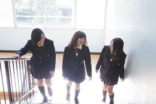 階段で談笑する高校生たちの写真素材 [FYI00024454]