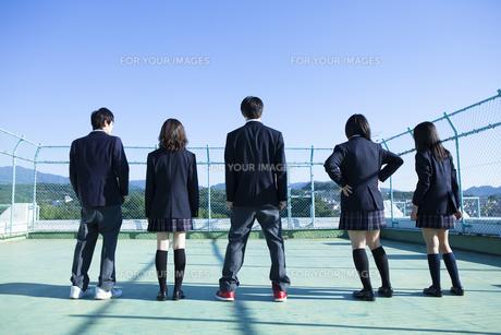 屋上に立つ高校生たちの写真素材 [FYI00024477]