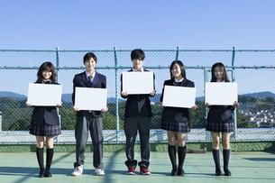 屋上に立つ高校生たちの写真素材 [FYI00024478]