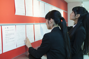 求人情報を閲覧する学生の素材 [FYI00024532]
