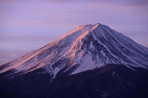 暁色の富士、Of Akatsuki color Fujiの写真素材 [FYI00024656]