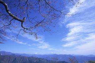 秋空の青空の素材 [FYI00024691]