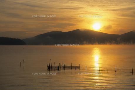 山中湖の夜明けの素材 [FYI00024701]