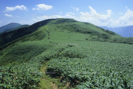 越後丹後山、Echigo Tango Mountain,の素材 [FYI00024810]