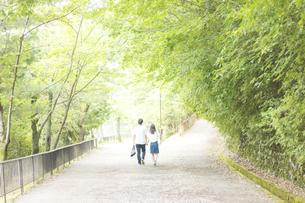 風と緑を感じながら道を歩くカップルの素材 [FYI00025000]
