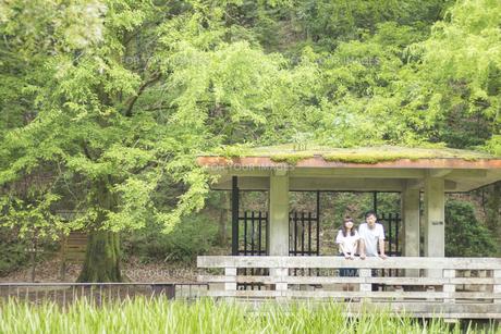身を寄せ合い風景を眺めるカップル(正面)の素材 [FYI00025010]