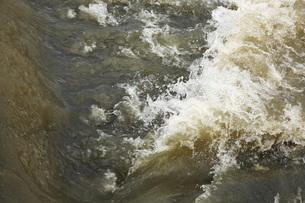 大雨の後の京都桂川の流れの素材 [FYI00025315]