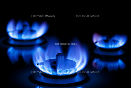 ガスの炎の写真素材 [FYI00025414]