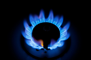 ガスの炎の写真素材 [FYI00025415]