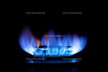ガスの炎の写真素材 [FYI00025416]
