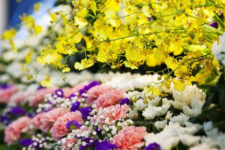 お葬式の献花の写真素材 [FYI00025440]
