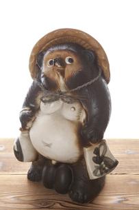 信楽焼の狸の写真素材 [FYI00025474]