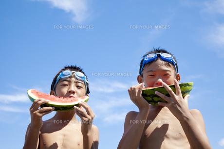 スイカを食べる男の子達の素材 [FYI00025485]