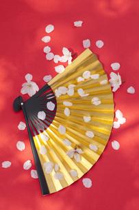 金扇子に舞う桜の花びらの素材 [FYI00025501]