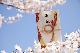 春の御祝の写真素材 [FYI00025502]