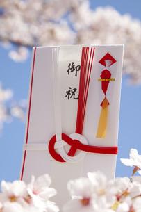 春の御祝の写真素材 [FYI00025512]