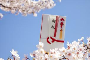 春の御祝の写真素材 [FYI00025513]