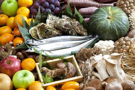秋の食材集合の写真素材 [FYI00025613]