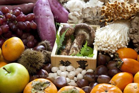 秋の食材集合の写真素材 [FYI00025618]