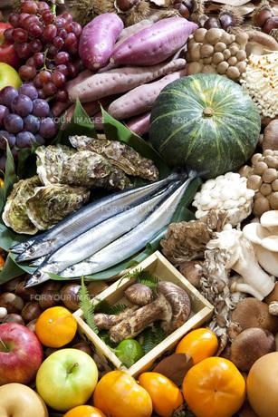 秋の食材集合の写真素材 [FYI00025625]