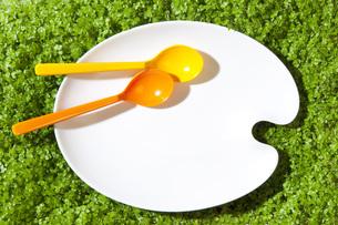 お皿とスプーンの環境イメージの写真素材 [FYI00025630]