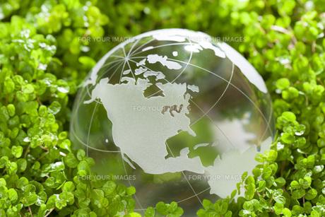 ガラスの地球儀の素材 [FYI00025691]