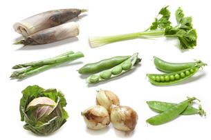 春野菜の写真素材 [FYI00025713]