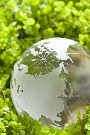 ガラスの地球儀の素材 [FYI00025728]