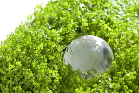 ガラスの地球儀の素材 [FYI00025739]