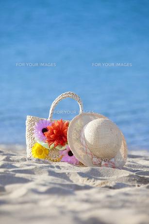 海辺の帽子とカバンの素材 [FYI00025783]