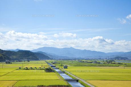 豊岡市の田園風景の写真素材 [FYI00025805]