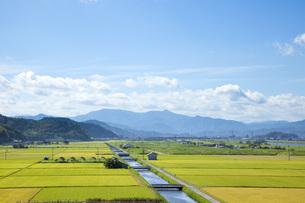 豊岡市の田園風景の素材 [FYI00025805]