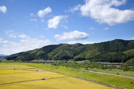 豊岡市の田園風景の写真素材 [FYI00025826]