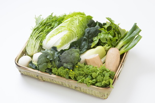 冬野菜のかご盛りの写真素材 [FYI00026043]