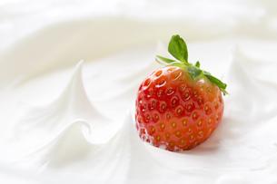 ホイップクリームとイチゴの写真素材 [FYI00026108]